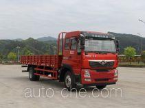Бортовой грузовик Homan ZZ1128F10EB0